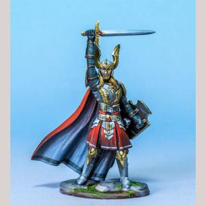 Male Paladin with Sword and Shield